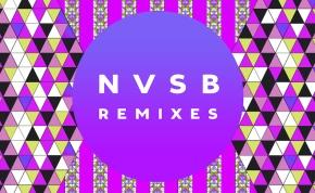 """Bassnectar – """"Now (Run DMT Remix)"""" (FREEDL!!)"""
